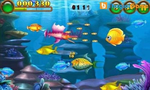 Điều khiển hướng đi của chú cá