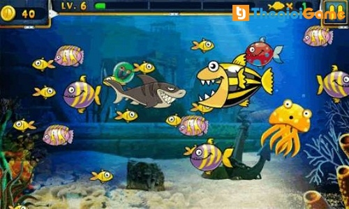 Cuộc chiến sinh tồn dưới đáy đại dương